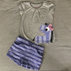 Baby Girl Shorts Outfit, Gray and Purple w Zebra